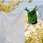 Wäsche an der frischen Luft trocknen